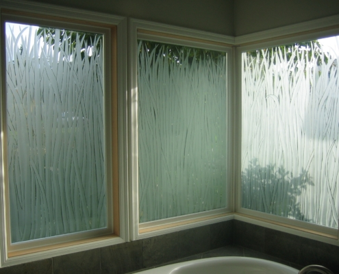 Custom Etched Glass Privacy Windows - DW-012